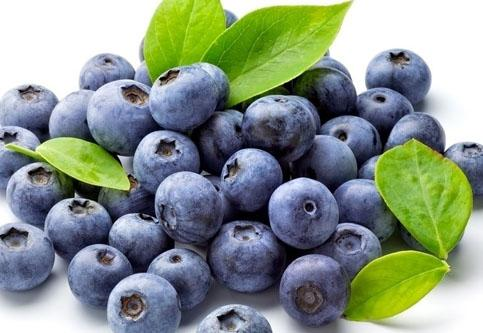 Blue Berry Extract Powder