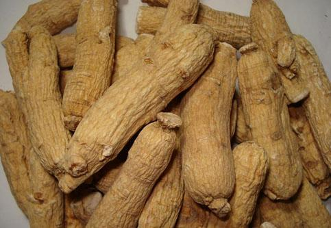 American Ginseng Extract Powde